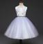 Flower Girl Dress Princess Embroidered Bridesmaids Party Tutu Dress 2-8 ZG8