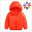 Boys-Girls-Down-Jacket-Coat-Puffer-Hooded-Kids-Outwear-Baby-Warm-Snowsuit-Padded thumbnail 13