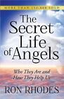 The Secret Life of Angels : Who They Are and How They Help Us by Ron Rhodes (2014, Paperback)