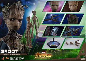 Marvel Groot Sixième Échelle Figure Avengers Infinity War Mms 475 Jouets Chauds Sideshow