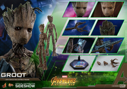 Marvel Groot Sixth Scale Figure Avengers Infinity Guerra MMS 475 Hot Toys
