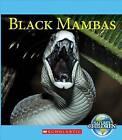 Black Mambas by Vicky Franchino (Paperback / softback, 2015)