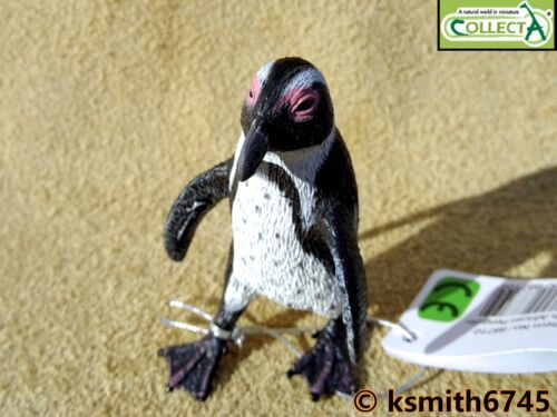 NEW CollectA AFRICAN PENGUIN plastic toy wild zoo sea marine BIRD animal