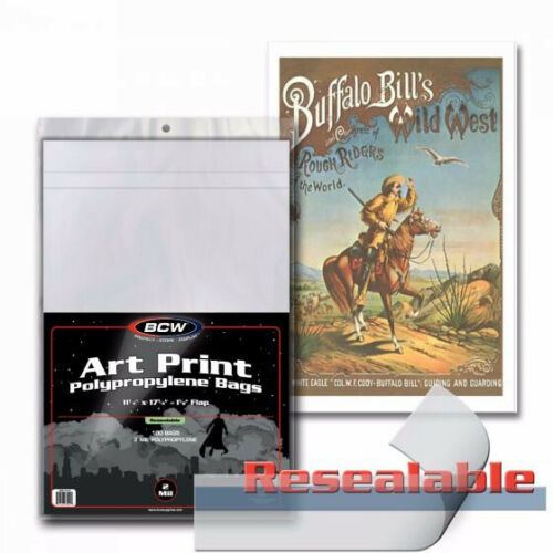 BCW 11X17 PHOTO ART PRINT MINI POSTER RESEALABLE BAGS /& BACKING BOARDS 50