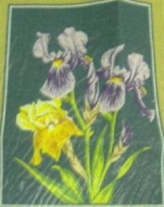 Irises Flowers Tapestry Needlepoint Kit Margot 3230081222696 Ebay