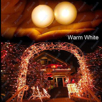 30X LED Berry Globe Ball Fairy Float Glowing Light Christmas Steady Flash Decor
