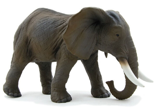 African Elephant Toys For Boys : Mojo fun african elephant model toy ebay