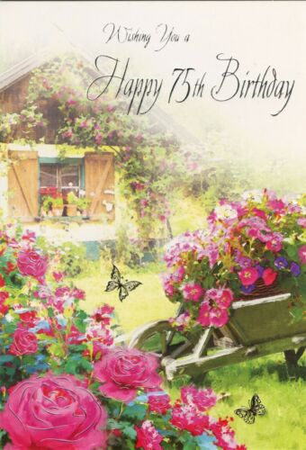 MALE OR FEMALE YOU/'RE 75 TODAY 75TH BIRTHDAY CARD 1STP/&P VARIOUS DESIGNS