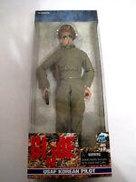 1999 Hasbro Gi Joe Usaf Korean Pilot 12 Action Figure (hkyc41-603)