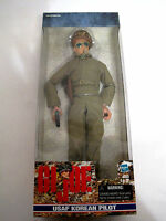 1999 Hasbro Gi Joe Usaf Korean Pilot 12 Action Figure (hkyc41-603)