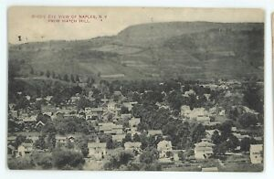 Birdseye-View-of-NAPLES-NY-Finger-Lakes-Ontario-County-New-York-Postcard