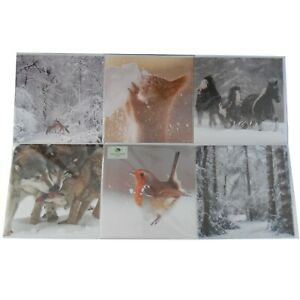 Scenic-Woodland-and-Animal-Grettings-Cards-Christmas-Cards-Wildlife-Nature