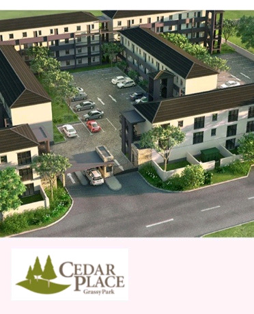 Bachelor flat in cedar place for sale