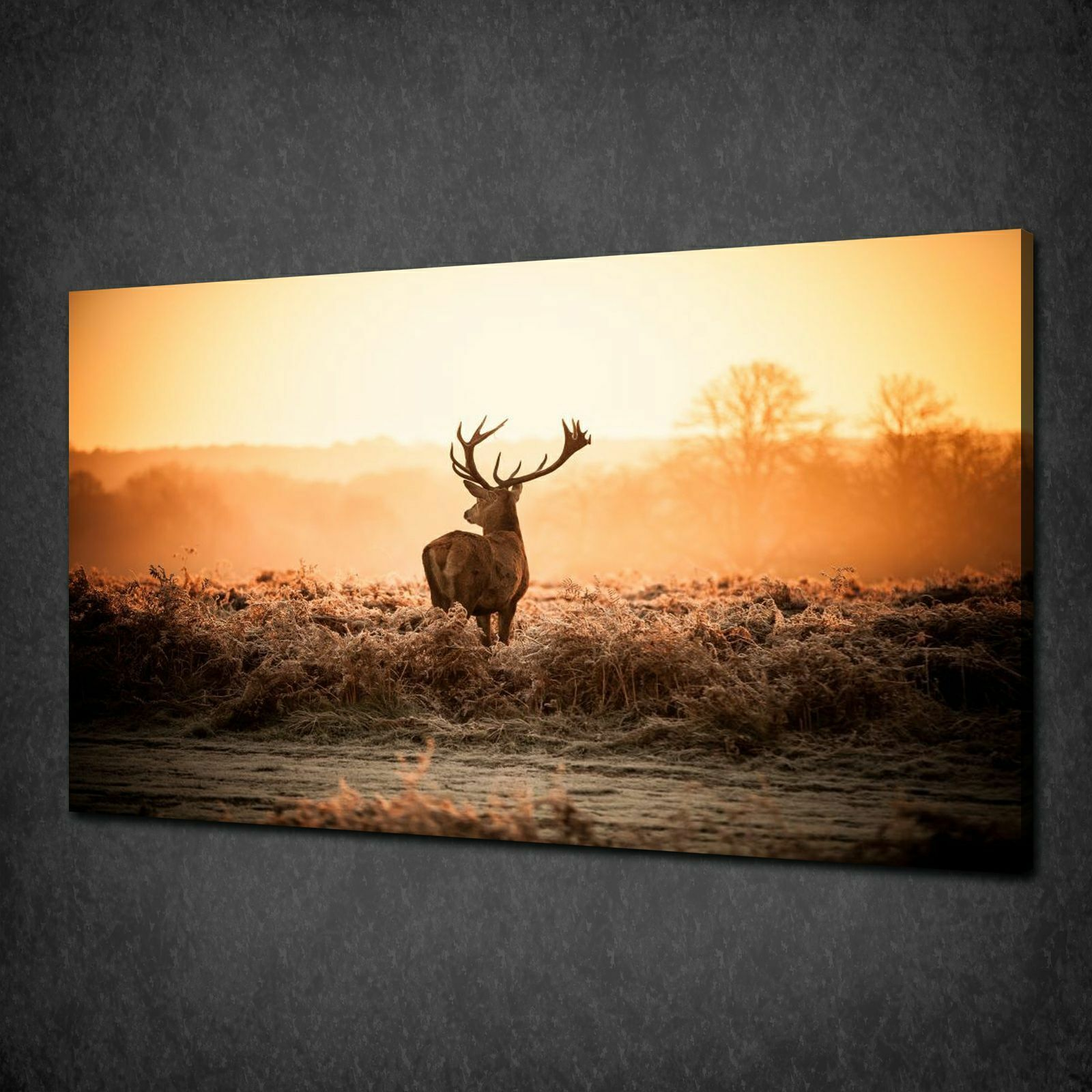 rot STAG DEER MISTY MORNING CANVAS PRINT PICTURE WALL ART VARIETY OF GrößeS
