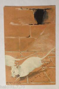 034-Ratten-Keller-Laufen-034-1903-Praegekarte-6283