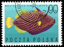 Scott # 1496 - 1967 - ' Undulate Triggerfish ', Tropical Fish