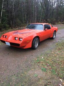 1980 301 turbocharged Firebird
