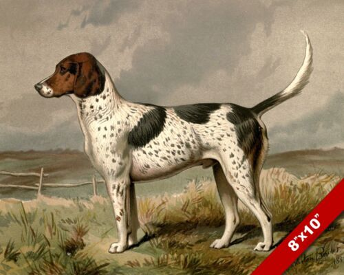 FOX HOUND AT ATTENTION PORTRAIT PET DOG ANIMAL ART PAINTING PRINT ON REAL CANVAS