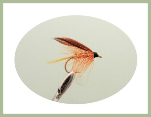 fly fishing SF3A All Named Varieties Wet Trout Fishing Flies 50 Pack