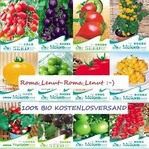 60-Tomatensamen-12-Sorten-Tomaten-Non-GMO-Bio-100-BLITZVERSAND