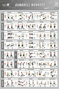 13 BodyBuilding-Guide-Fitness-Gym Dumbbell-Workout-Exercise-Poster 12x18 20x30in