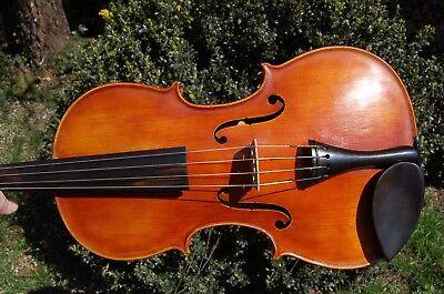 Budapest Lovely Luster Von Paulus Pilat 1897? In Topzustand Charitable Große Bratsche/viola 41,5 Cm