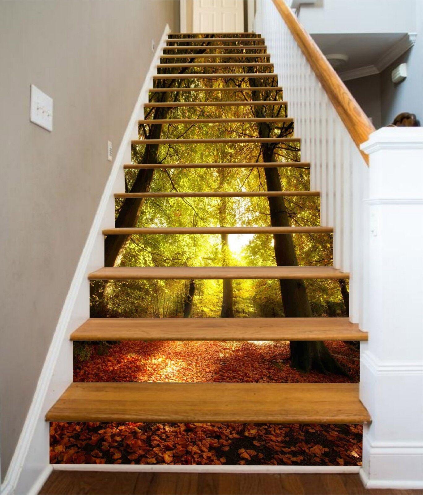 3D Sun Forest 6 Stair Risers Decoration Photo Mural Vinyl Decal Wallpaper CA