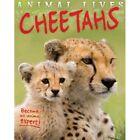Animal Lives: Cheetahs by Sally Morgan (Paperback, 2014)