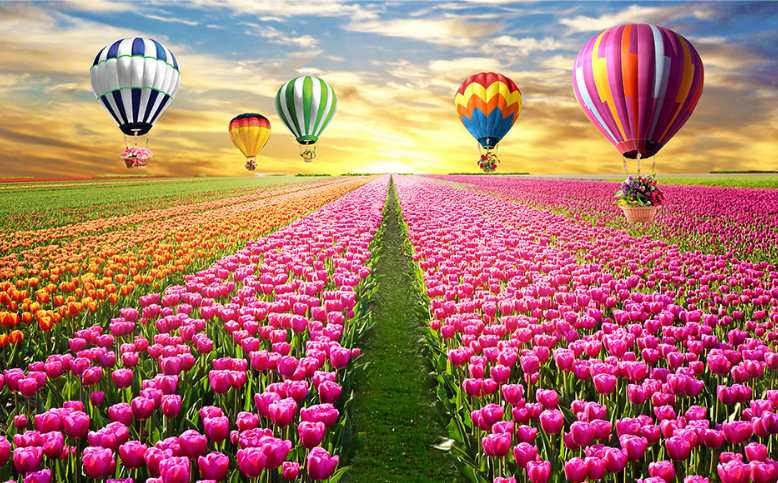 3D Ballon Tulpe Feld 74 Tapete Wandgemälde Tapete Tapeten Tapeten Tapeten Bild Familie DE Summer | Economy  | eine breite Palette von Produkten  | Haltbarkeit  657c43