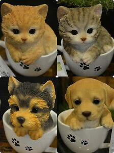 Dog Puppy Cat Kitten in Teacup Pet Figure Resin Life Like Statue NEW Shelley B