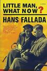 Little Man, What Now? by Hans Fallada (Paperback, 2009)
