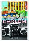 In the Spirit of Harlem von Naomi Fertitta (2014, Gebundene Ausgabe)