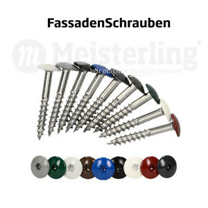 Meisterling-FassadenSchrauben-25-55-mm-in-V4a-V2a-Edelstahl-Inox-gehaertet
