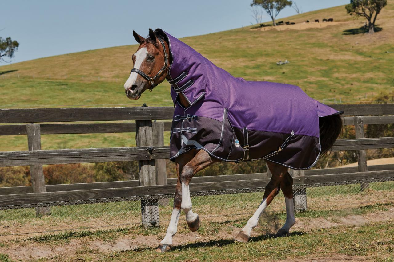 Weatherbeeta Comfitec Plus Dynamic Combo  1200D 360g Heavy Weight Turnout Rug  outlet sale