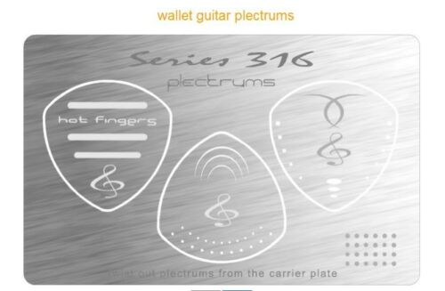 Stainless Steel Guitar Picks 2 packs 6 picks Wallet Fit Plectrums New