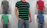Abercrombie & Fitch A&f 2013 Men 's Muscle Fit Calkins Brook Tee T Shirt