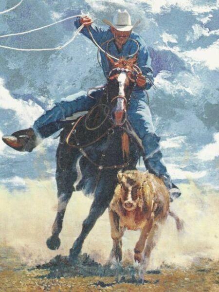 Western Cowboy Roping /& Riding Wallpaper Border IN2648B