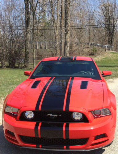 """2010 11 2012 2013 2014 Mustang 19/"""" Wide Center Rally Stripe Set Style #2 Stripes"""