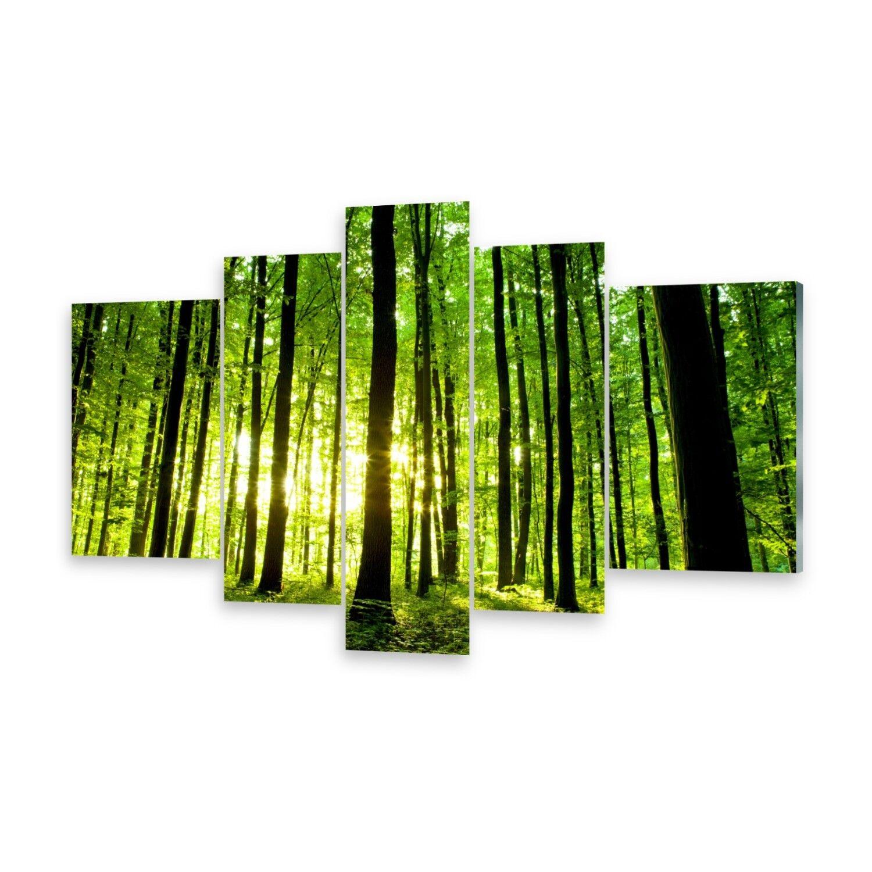 Mehrteilige Bilder Glasbilder Wandbild Grüner Wald