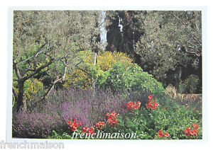 NEW-UNUSED-French-Printed-Postcard-Jardins-de-Provence-Garden-Flowers-Alpilles