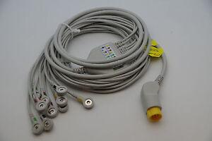 Ecg Wires | New 12 Leads 10 Wires Ekg Ecg Cable For Mortara Surveyor Ebay