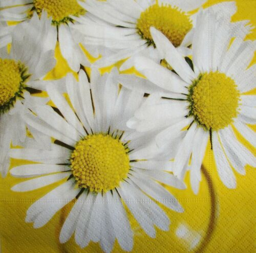 4 x Single Paper Napkins for Decoupage Craft and Table Daisy White Flowers 218