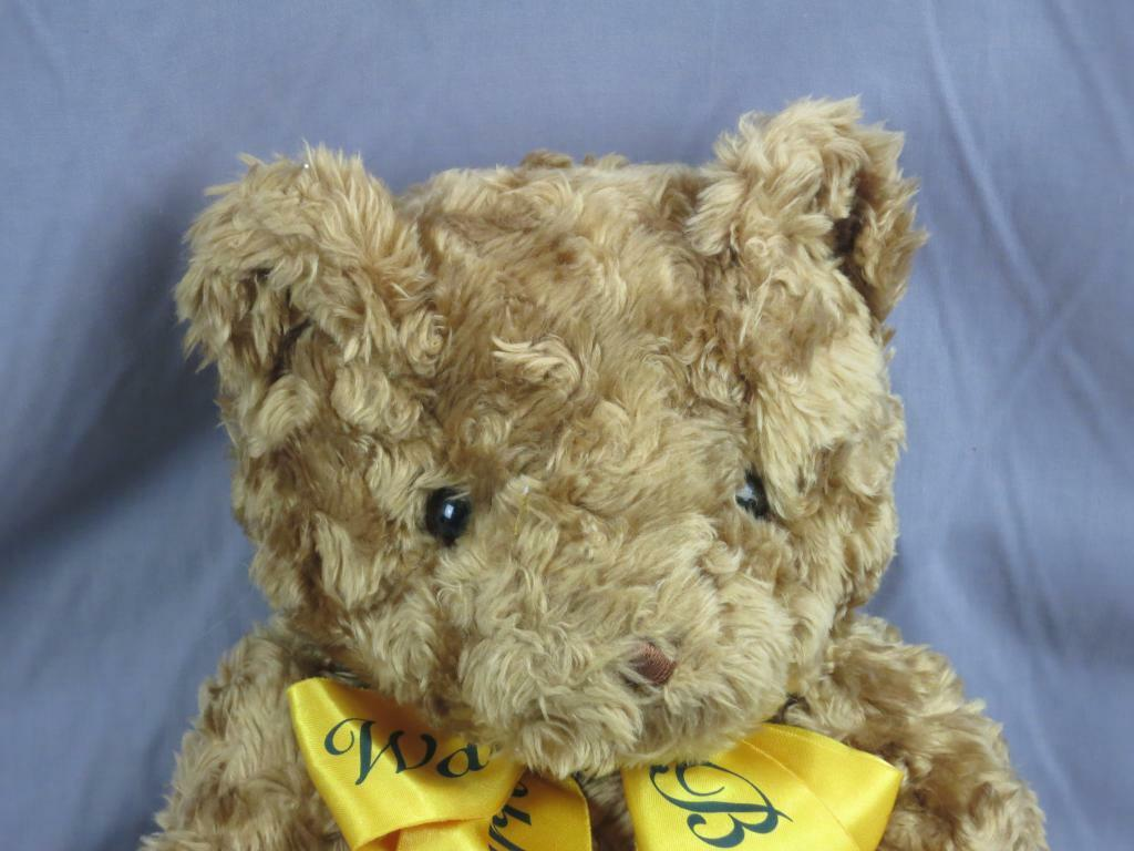 BIG IN 2000 WARNER BROS. STUDIO braun CURLY HAIR TEDDY BEAR GOLD RIBBON PLUSH