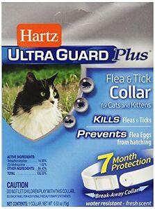 Hartz-UltraGuard-Water-Resistant-Plus-Flea-amp-Tick-Collar-for-Cats-and-Kittens