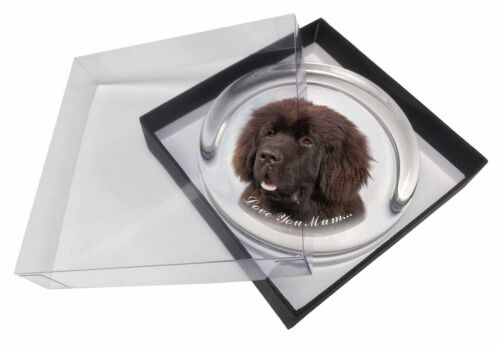 AD-NF3lymPW Newfoundland Dog /'Love You Mum/' Glass Paperweight in Gift Box Chris