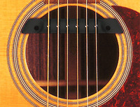 Artec MSP50 soundhole pickup for acoustic guitar msp-50 - Natural sounding
