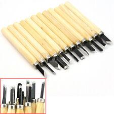 Set Mini Scalpelli Sgorbie per Legno Incisione Scultura in Acciaio Inox 12 Pezzi