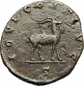 GALLIENUS-son-of-Valerian-I-267AD-Authentic-Ancient-Roman-Coin-GOAT-i77193