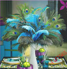 new decorate beautiful natural peacock feathers eyes 10-40 inches/25-100 cm