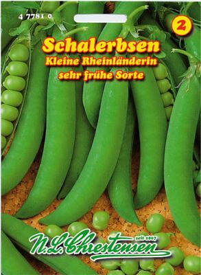 Markerbse,Costa,mittelspät,Saatgut,Pisum sativum,Gemüse,Chrestensen,NLC 4b